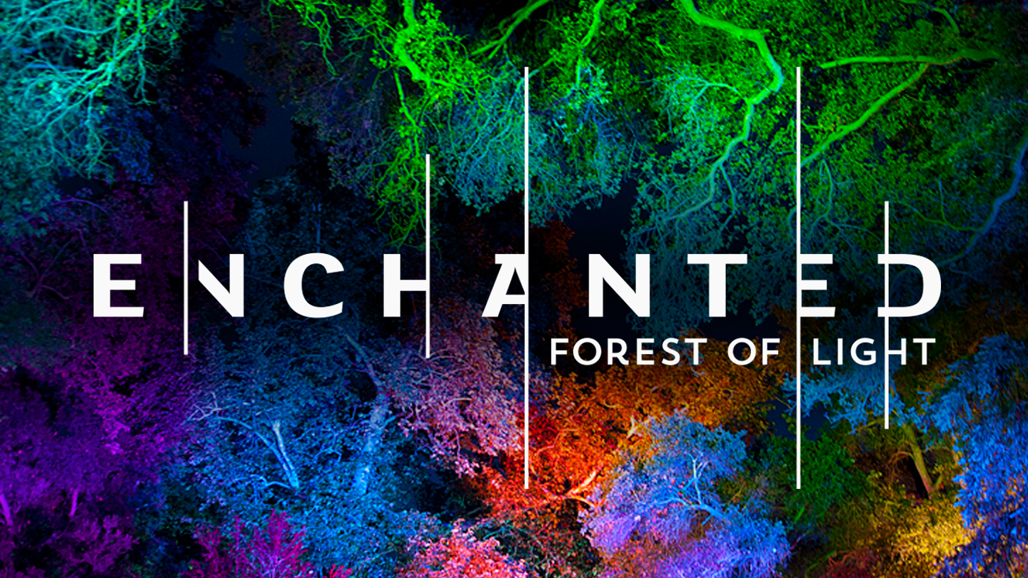 Enchanted: Forest Of Light Opens At Descanso Gardens. Enchanted Logo