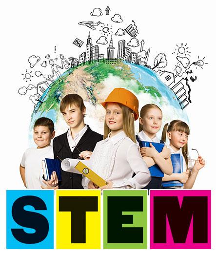 stem2