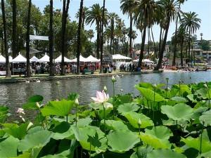 lotusfestival